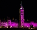0128-canadian-parliament-10-7-10