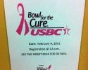031-bowl-for-the-cure